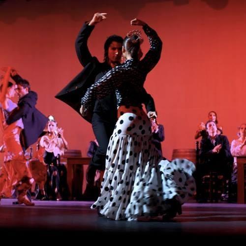 Carmen Mota Spanish dance show