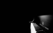Steinway 2-Piano Festival 2019 (Festival)