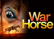 War Horse - This performance is on Thu 17-Jan-2019 at 19:30