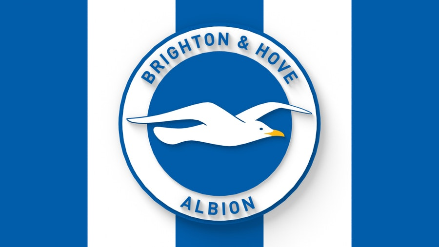 Brighton and Hove Albion F.C.
